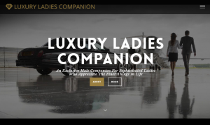 luxury ladies companion