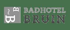 Google Analytics Badhotel Bruin